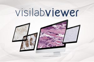 visilabviewer